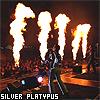 Silver-Platypus